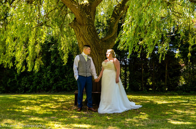 Bride and groom wedding portrait under a tree by Lilliput Photography, West Midlands Wedding Photographer